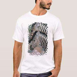 Zebra (Equus burchelli), Etosha National Park, T-Shirt