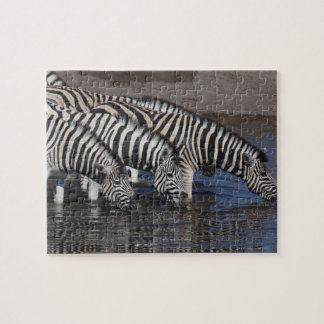 Zebra (equus quagga) drinking at a waterhole in jigsaw puzzle
