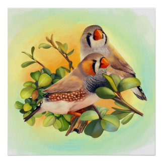 Zebra finch realistic painting poster