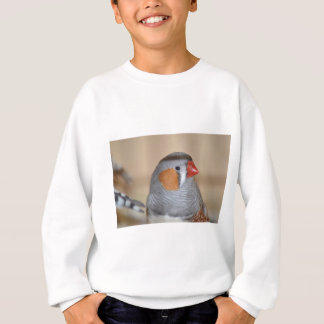 Zebra Finch Sweatshirt