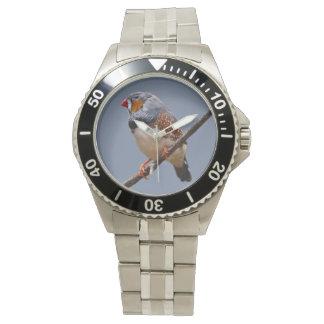 Zebra Finch Watch