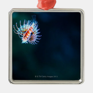 Zebra firefish christmas ornament