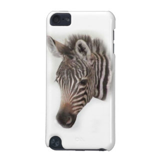 Zebra Foal iPod Touch (5th Generation) Covers