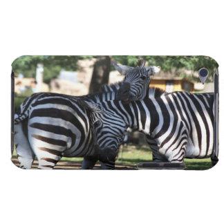 Zebra Friends iPod Case-Mate Cases