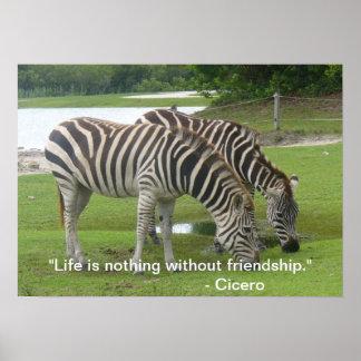 Zebra Friendship Poster