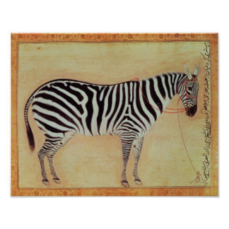 "Zebra, from the ""Minto Album"", Mughal, 1621, Poster"