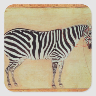 "Zebra, from the ""Minto Album"", Mughal, 1621, Square Sticker"