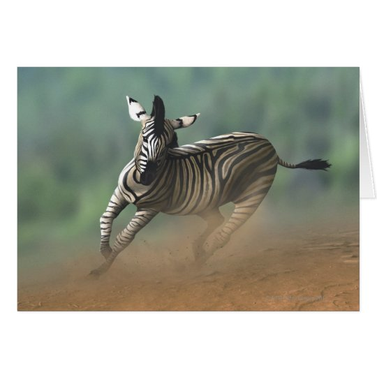 Zebra galloping over the desert landscape. card
