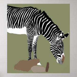 zebra head down poster
