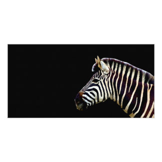 Zebra Head to Shoulder Customized Photo Card