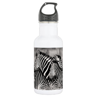 Zebra Herd Nature Safari Black and White Stripes 532 Ml Water Bottle