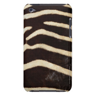 Zebra Hide iPod Touch Covers