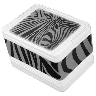 zebra igloo cool box