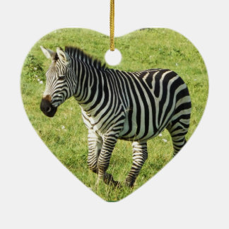 zebra in Serengeti.,Ngorongoro Crater Christmas Tree Ornaments