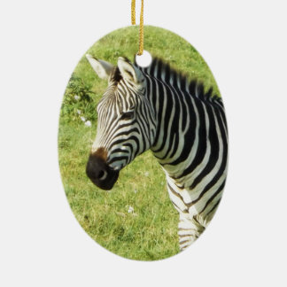 zebra in Serengeti.,Ngorongoro Crater Double-Sided Oval Ceramic Christmas Ornament