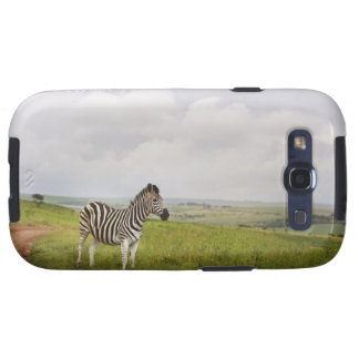 Zebra in the countryside, South Africa Samsung Galaxy S3 Covers
