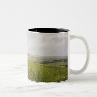 Zebra in the countryside, South Africa Two-Tone Coffee Mug