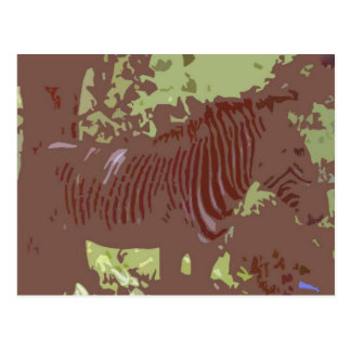 Zebra In The Shadows Postcard