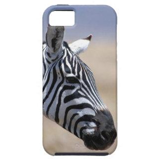 Zebra iPhone 5 Cover