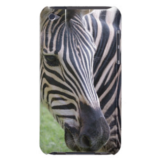 Zebra  iTouch Case iPod Touch Cover