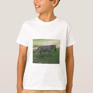 Zebra Kid's T-shirt