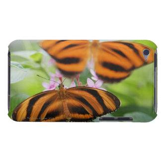 Zebra Long Wing Butterfly 2 Barely There iPod Cases