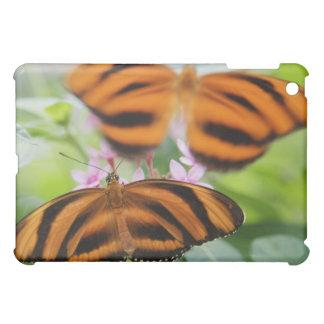 Zebra Long Wing Butterfly 2 Case For The iPad Mini