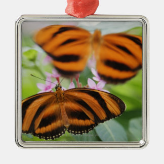 Zebra Long Wing Butterfly 2 Christmas Ornament