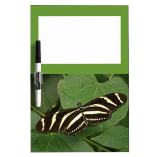 Zebra Longwing Butterfly Memo Board