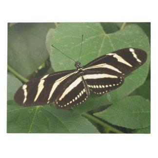 Zebra Longwing Butterfly Notepad