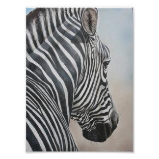Zebra Look Wildlife Art Animal Print Photo Print