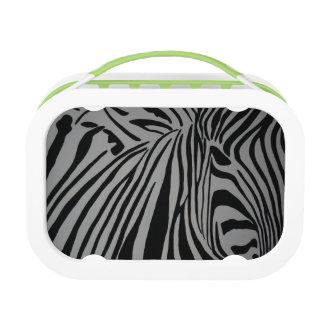 zebra lunch box