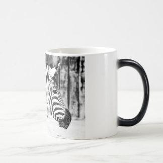 Zebra Magic Mug