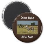 Zebra migration wildlife safari magnets