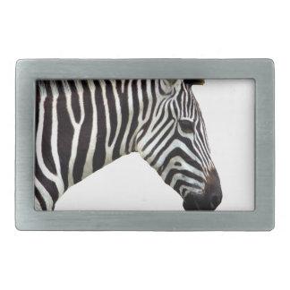 zebra-on-the-masai-mara rectangular belt buckles