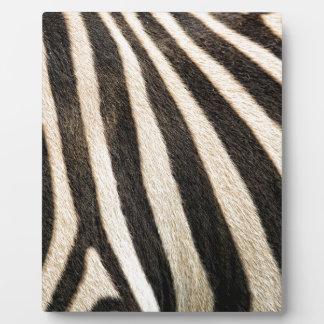Zebra pattern plaque