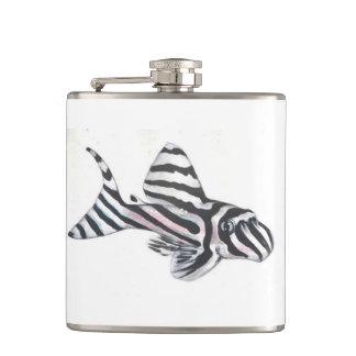 Zebra Pleco L46 Catfish Small Flask