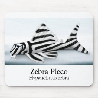 Zebra Pleco Mousepad