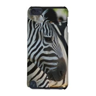 Zebra Pose iPod Touch (5th Generation) Case