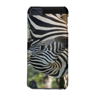 Zebra Pose IPod Touch Case
