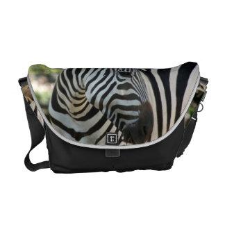 Zebra Pose Messenger Bag