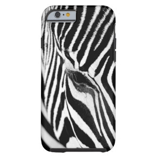 Zebra Profile Tough iPhone 6 Case