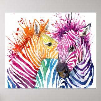 Zebra Rainbow Poster