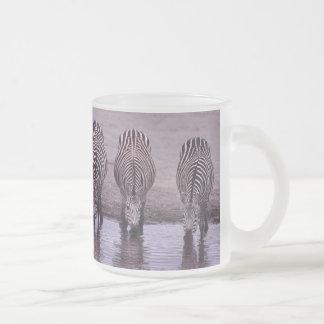 Zebra Safari Africa Stripe Pattern Animal Drinking Mugs