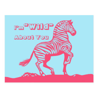 Zebra School Kids Valentines Day Post Cards