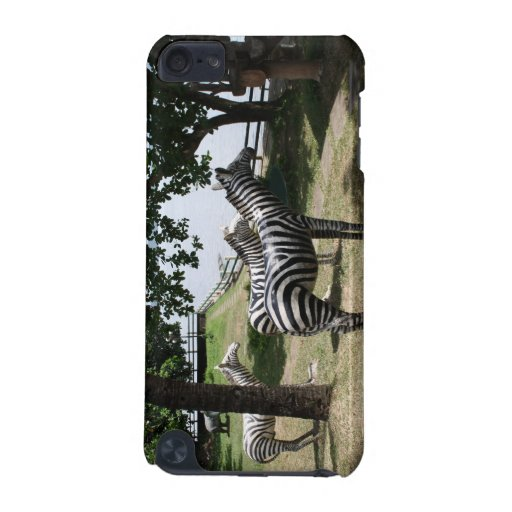 Zebra statues iPod touch (5th generation) cover