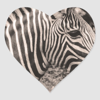 Zebra Heart Stickers