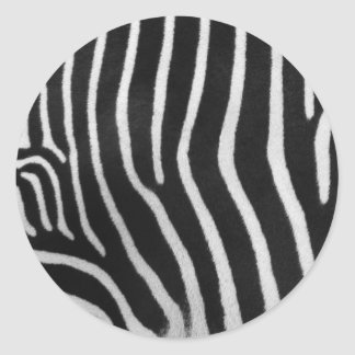 Zebra Stripe Pattern Sticker