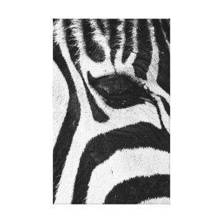 Zebra Stripes Abstract Black & White Canvas