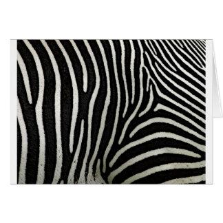 Zebra Stripes Greeting Card